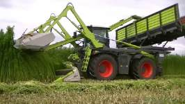 Hemp mowing with converted Claas Xerion 4000